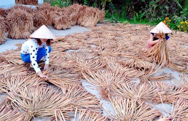 eceng gondok dikeringkan 600x386 - Kerajinan Eceng Gondok Peluang Usaha Desa Kreatif dan Inovatif
